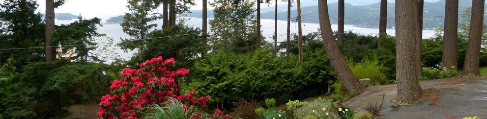 Privateer Holiday Rental garden