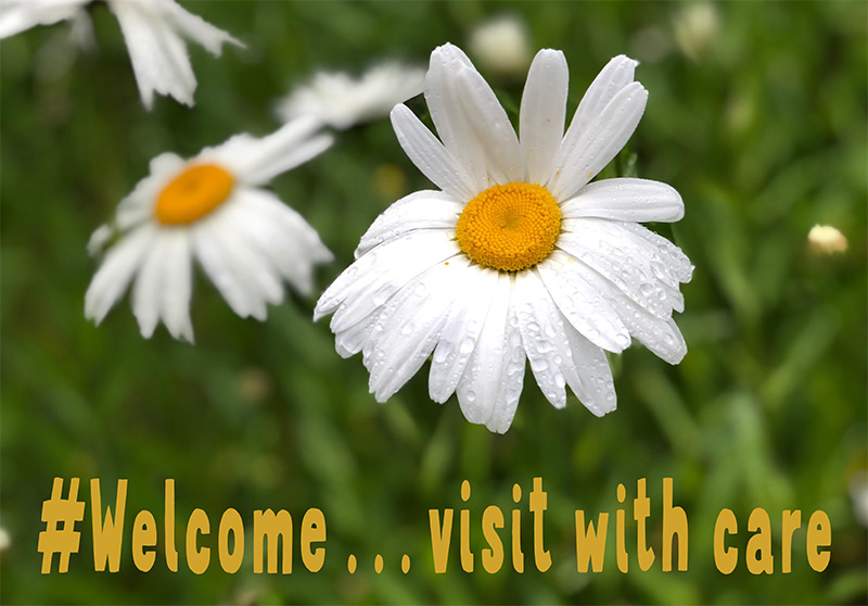 Welcome, visit with care